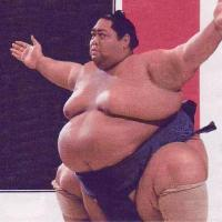 Fit - for Sumo Wrestling
